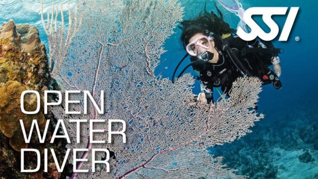 Open Water Diver Bali
