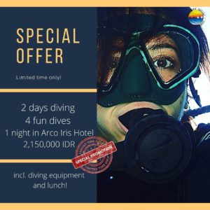 Special-Offer-diving-accomodation-bali