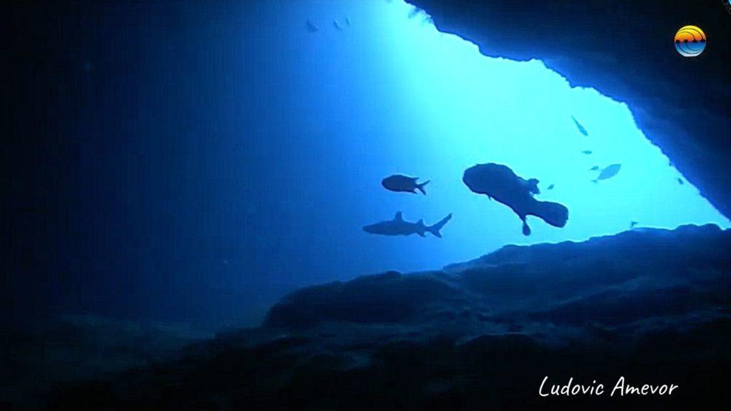 diving-candidasa