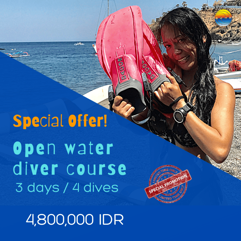special-offer-diving-bali