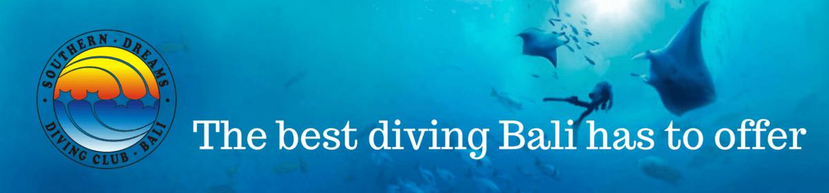 Southern Dreams Diving Club